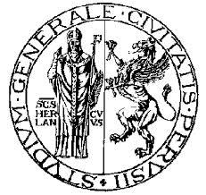 Logo Universita PG